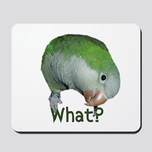 "Quaker Parrot ""What?"" Mousepad"