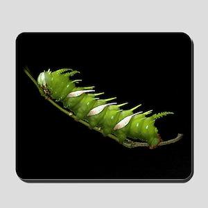 Adeloneivaia Caterpillar Mousepad