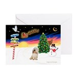 XmasSigns/PBGV #2 Greeting Cards (Pk of 10)