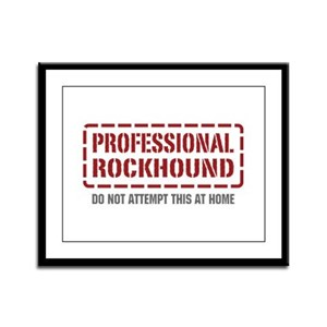 Professional Rockhound Framed Panel Print