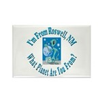 Roswell Rectangle Magnet (100 pack)