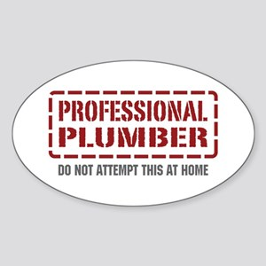 Professional Plumber Oval Sticker