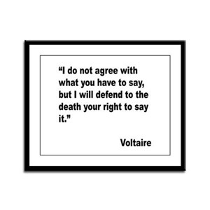 Voltaire Free Speech Quote Framed Panel Print