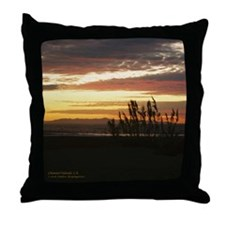 Channel Islands Throw Pillow
