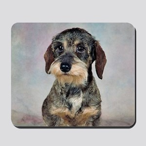 Wirehaired Dachshund Mousepad