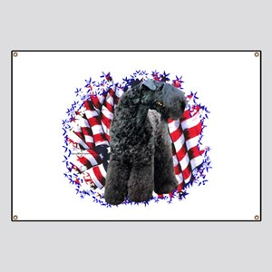 Kerry Patriot Banner