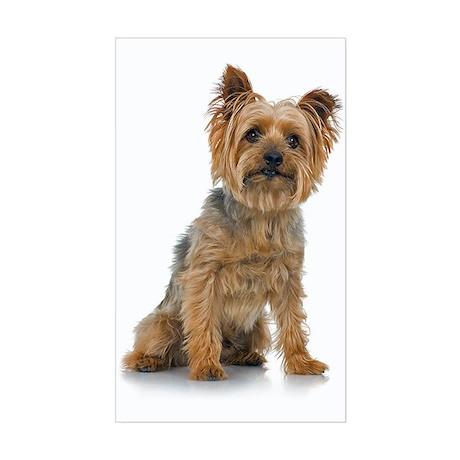 Silky Terrier Rectangle Sticker