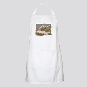 Climbed Great Wall Photo - BBQ Apron