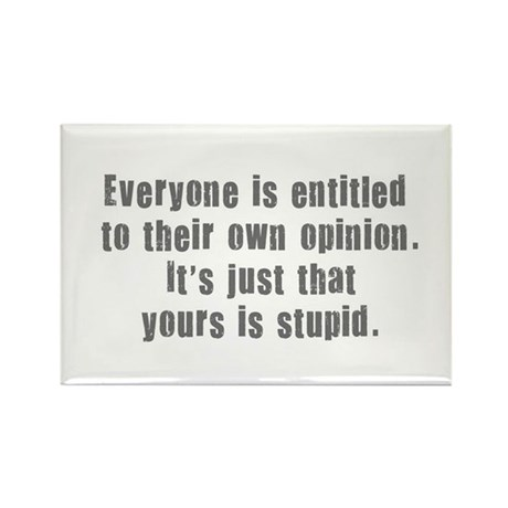 People and Stupid Opinions Rectangle Magnet (10 pa