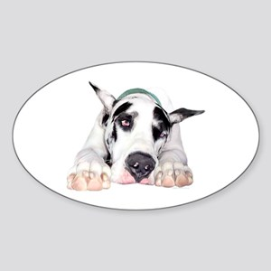 Great Dane Shy Harlequin Oval Sticker
