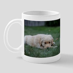 Golden in the Grass Mug