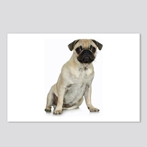 Fawn Pug Postcards (Package of 8)