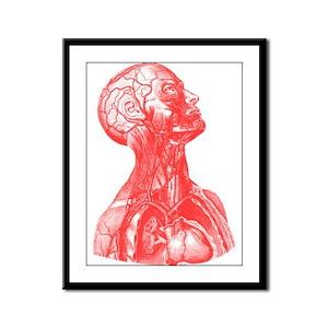 Vintage Medical Drawing Framed Panel Print