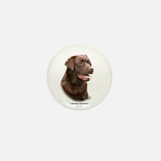 Labrador Retriever 9Y243D-004a Mini Button