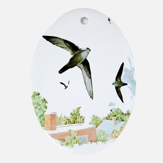Chimney Swift Oval Ornament
