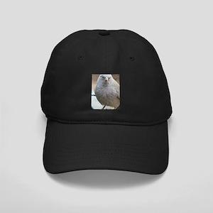 Angry Bird Black Cap