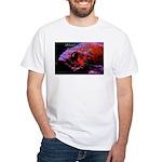 Suckerfish White T-Shirt