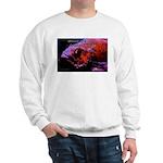 Suckerfish Sweatshirt