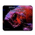 Suckerfish Mousepad