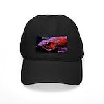 Suckerfish Black Cap