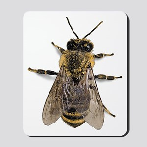 Big Honey Bee Mousepad