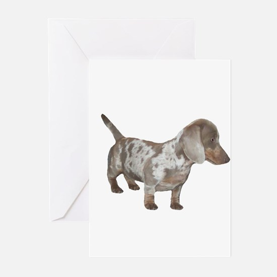 Speckled Dachshund Dog Greeting Cards (Pk of 20)