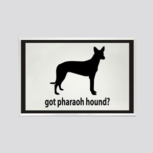 Got Pharaoh Hound? Rectangle Magnet
