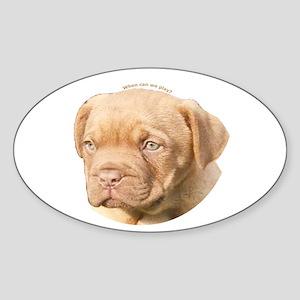 Dogue De Bordeaux Puppy Oval Sticker