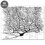 Neuron1 Puzzle