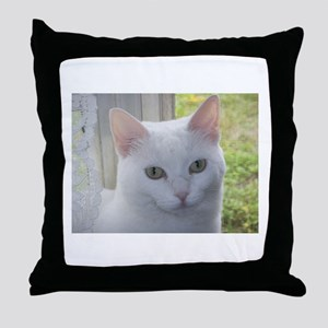Sugar Kitty Collection Throw Pillow