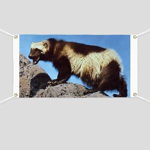 Wolverine Photo Banner
