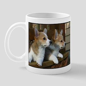 Double Trouble! Mug
