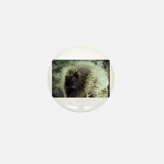 Porcupine Photo Mini Button