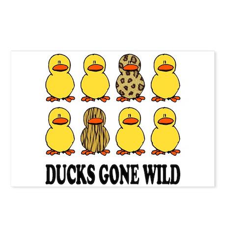 Ducks Gone Wild Postcards (Package of 8)