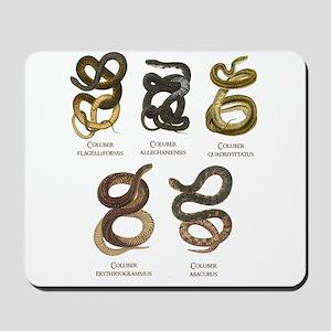 Antique Snakes Print Mousepad