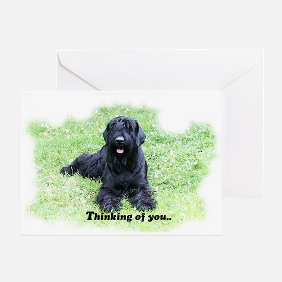 Giant Schnauzer portrait Greeting Card