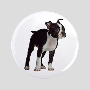 "Boston Terrier 3.5"" Button"