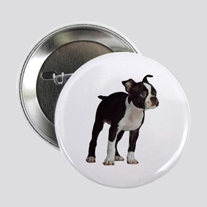 "Boston Terrier 2.25"" Button"