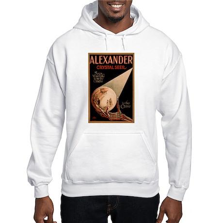 Alexander Crystal Seer Hooded Sweatshirt