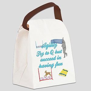 SucceedInFun Canvas Lunch Bag