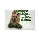 Saving Dogs Rectangle Magnet (100 pack)