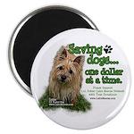 Saving Dogs Magnet