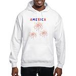 America's Fireworks Hooded Sweatshirt