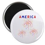 "America's Fireworks 2.25"" Magnet (100 pack)"