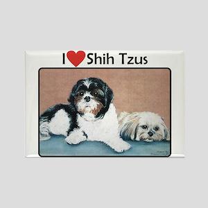I love Shih Tzus Rectangle Magnet