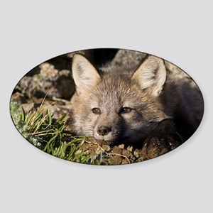 Cross Fox Kit Oval Sticker