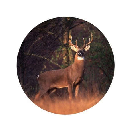 """Whitetail Deer 3.5"""" Button (100 pack)"""