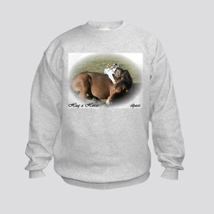 Hug a Horse Kids Sweatshirt, elpace