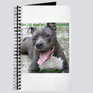 Smile With APBT Style Journal