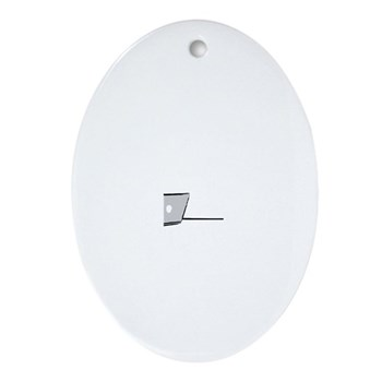 WTD: At Laptop Oval Ornament
